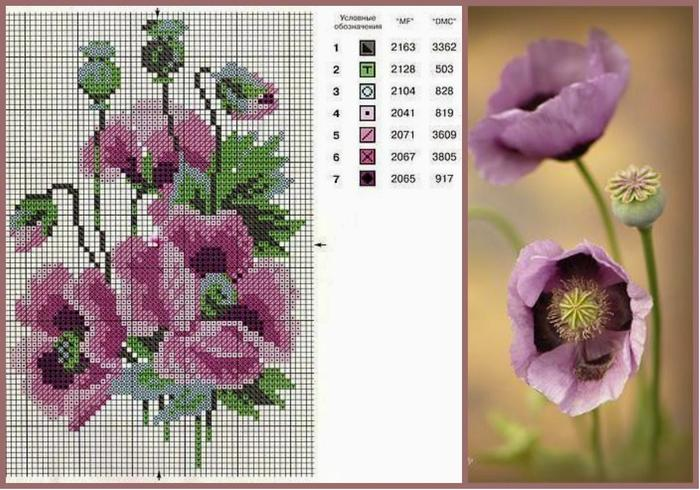 collage 12 (700x490, 248Kb)